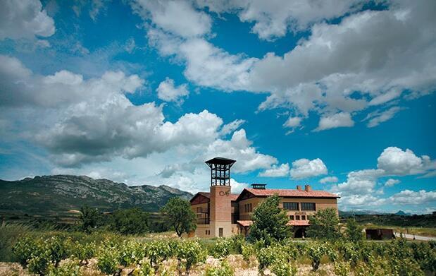 Visita a Bodega, cata y menú en Villabuena