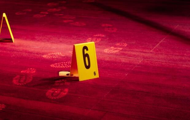 Curso online criminología, criminalística