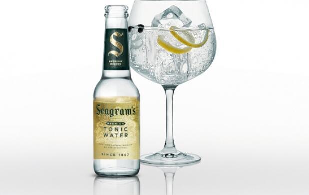 ¡Disfruta de un buen Gin Tonic en casa!
