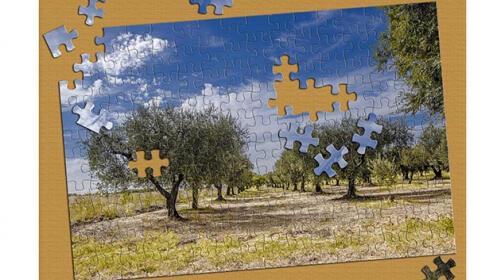 Puzzle personalizado 120 o 300 piezas