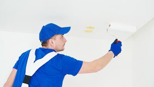 Pinta tu casa completa o por habitaciones, ¡Renuévala!