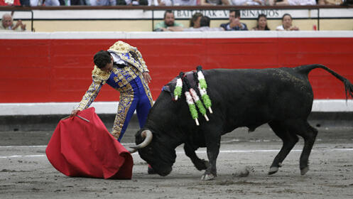 Toros con Cayetano, Roca Rey, Miguel Ángel Perera…