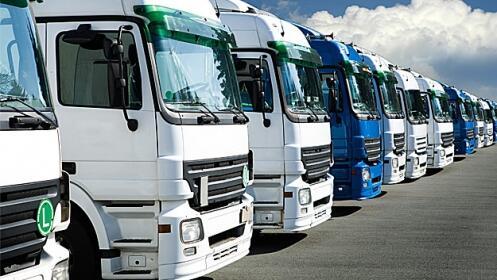 Carné de trailer, camión o autobús
